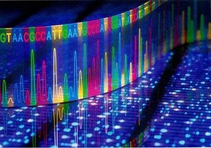 Zázraky medicíny: Od genomu za miliony k milionům genomů
