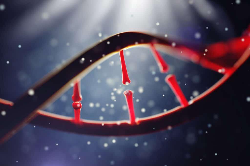 molekula DNA