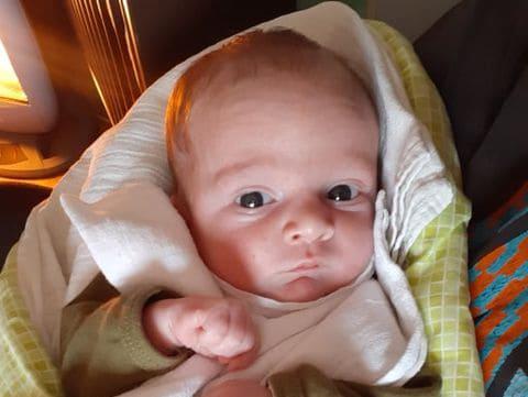 děti narozené poléčbě IVF